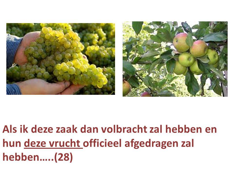 Als ik deze zaak dan volbracht zal hebben en hun deze vrucht officieel afgedragen zal hebben…..(28)