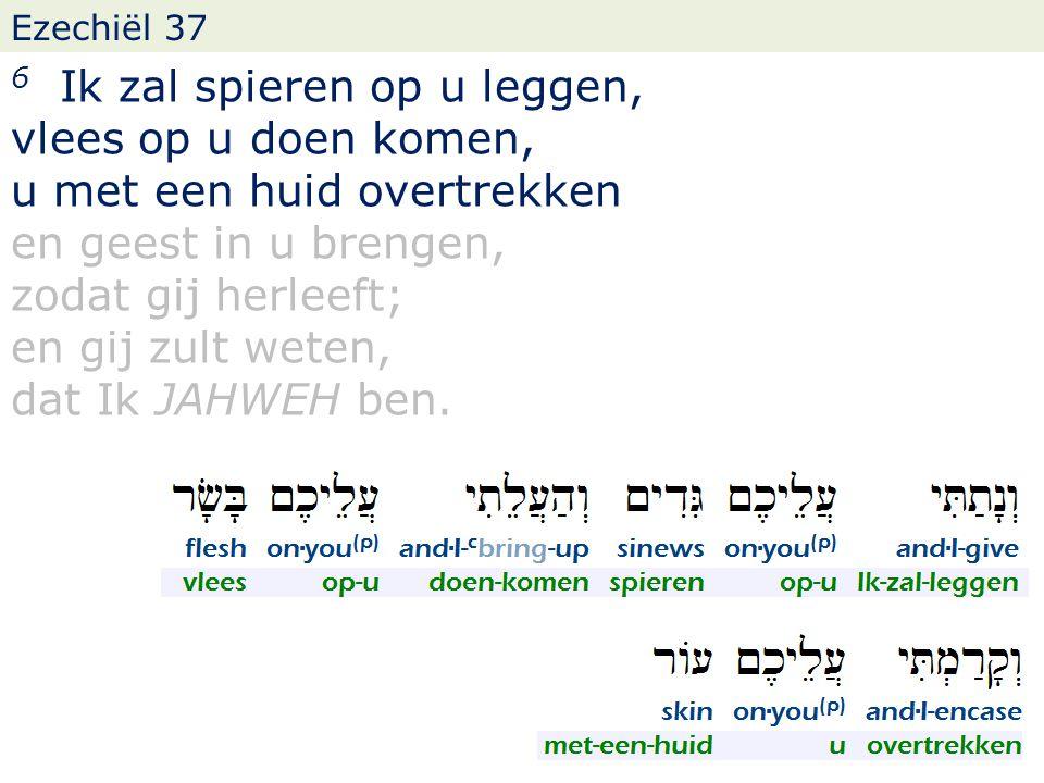 Ezechiël 37 6 Ik zal spieren op u leggen, vlees op u doen komen, u met een huid overtrekken en geest in u brengen, zodat gij herleeft; en gij zult wet
