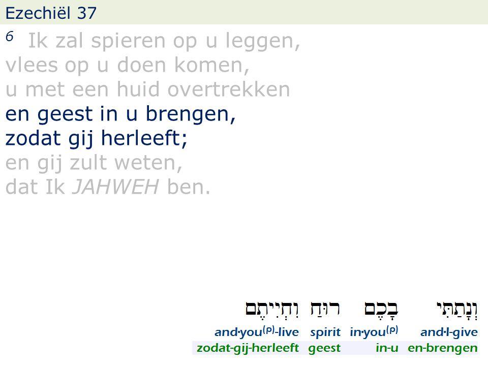 Ezechiël 37 6 Ik zal spieren op u leggen, vlees op u doen komen, u met een huid overtrekken en geest in u brengen, zodat gij herleeft; en gij zult weten, dat Ik JAHWEH ben.
