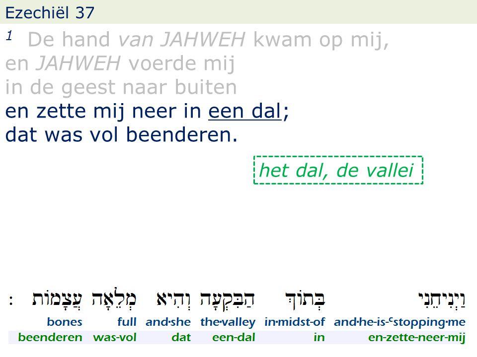 Ezechiël 37 1 De hand van JAHWEH kwam op mij, en JAHWEH voerde mij in de geest naar buiten en zette mij neer in een dal; dat was vol beenderen.
