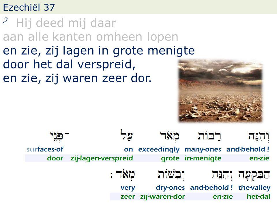 Ezechiël 37 2 Hij deed mij daar aan alle kanten omheen lopen en zie, zij lagen in grote menigte door het dal verspreid, en zie, zij waren zeer dor.