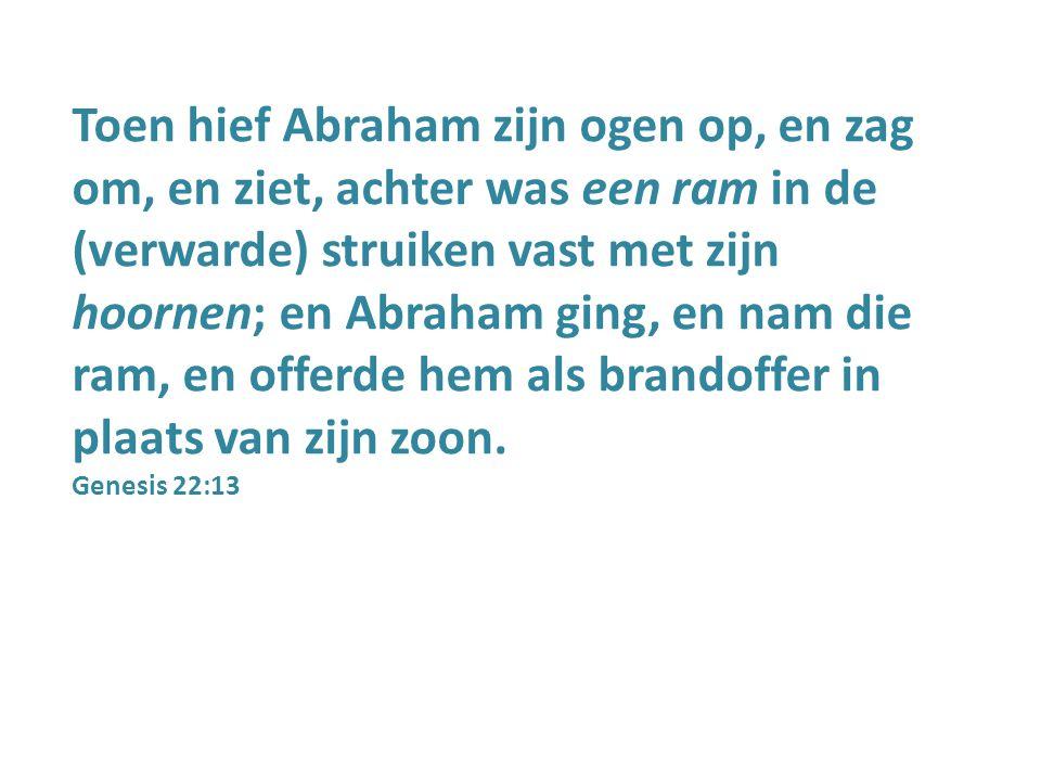 Toen hief Abraham zijn ogen op, en zag om, en ziet, achter was een ram in de (verwarde) struiken vast met zijn hoornen; en Abraham ging, en nam die ra