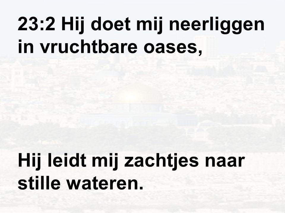 23:2 Hij doet mij neerliggen in vruchtbare oases, Hij leidt mij zachtjes naar stille wateren.