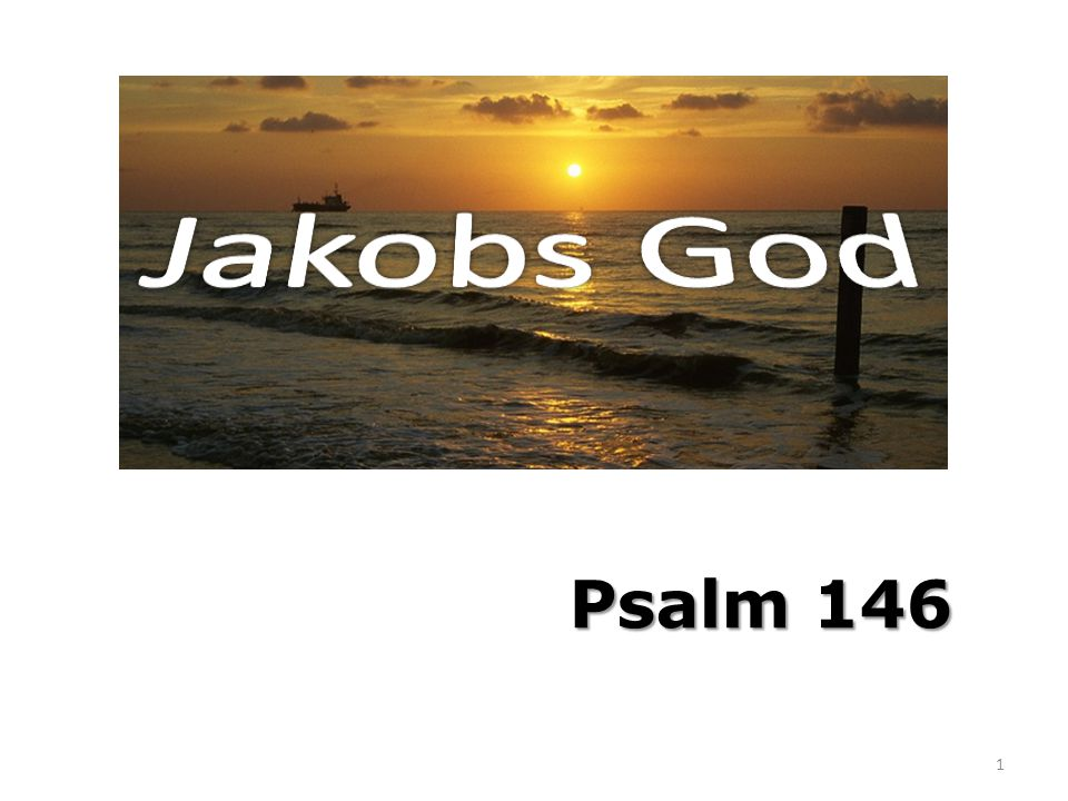 Psalm 146 1