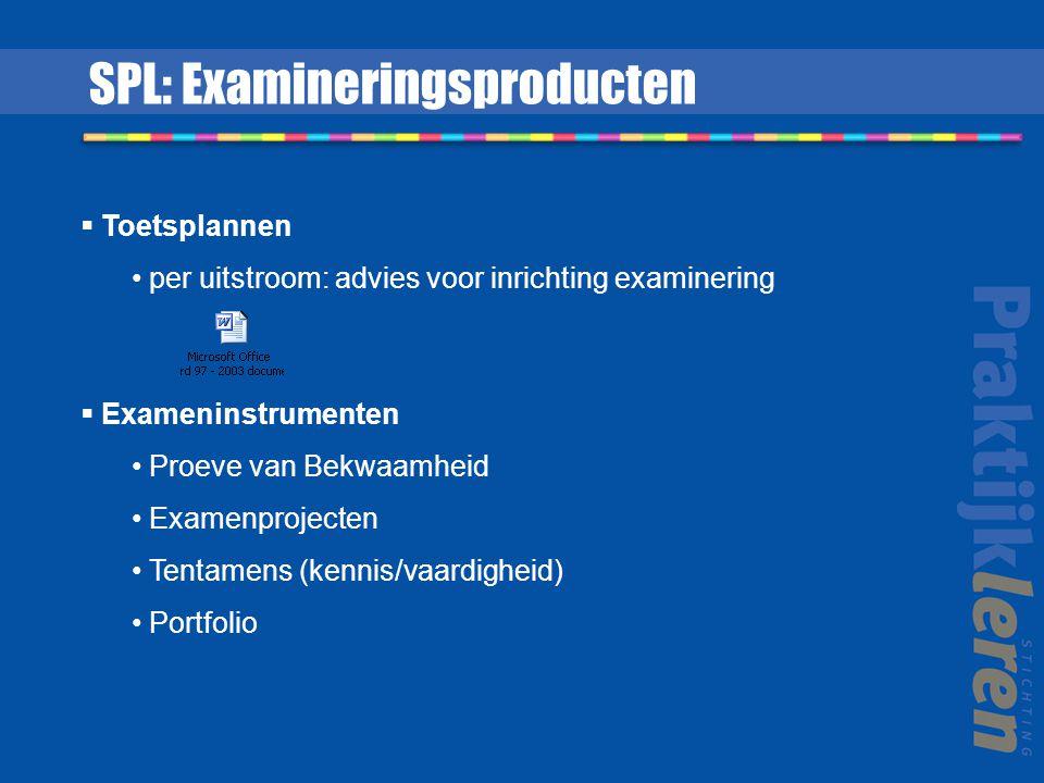  Toetsplannen per uitstroom: advies voor inrichting examinering  Exameninstrumenten Proeve van Bekwaamheid Examenprojecten Tentamens (kennis/vaardig