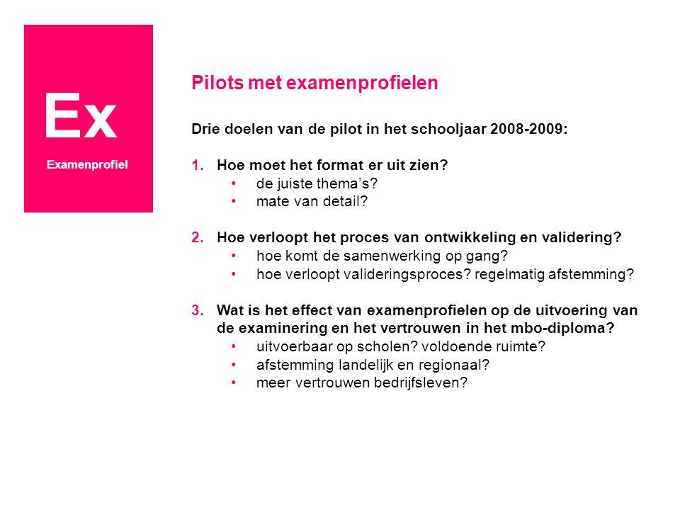Ex Examenprofiel Pilots met examenprofielen Drie doelen van de pilot in het schooljaar 2008-2009: 1.Hoe moet het format er uit zien? de juiste thema's