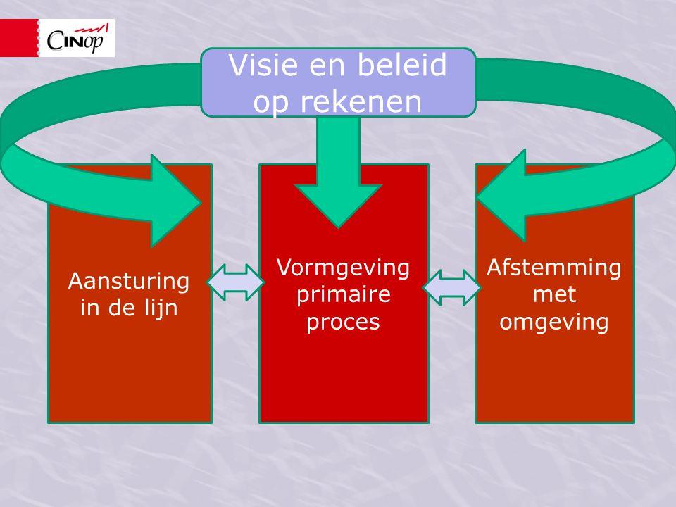 Visie en beleid op rekenen Vormgeving primaire proces Aansturing in de lijn Afstemming met omgeving