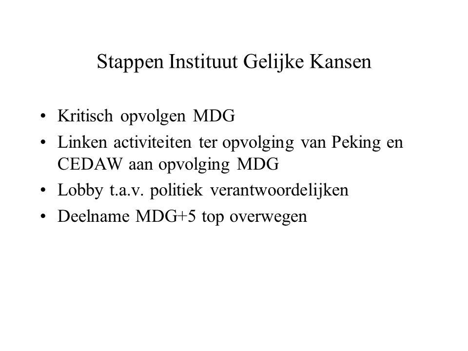 Stappen Instituut Gelijke Kansen Kritisch opvolgen MDG Linken activiteiten ter opvolging van Peking en CEDAW aan opvolging MDG Lobby t.a.v. politiek v