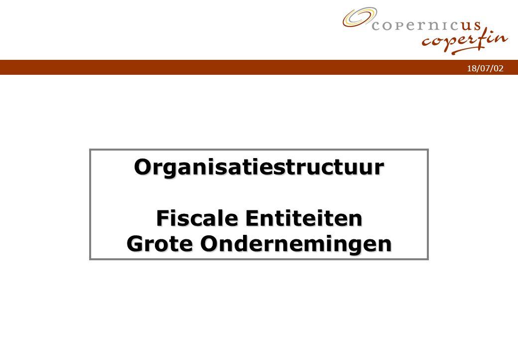 p. 1Titel van de presentatie 18/07/02 Organisatiestructuur Fiscale Entiteiten Grote Ondernemingen