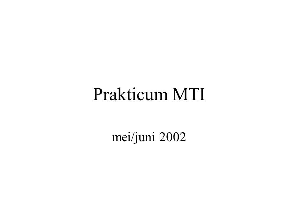 Prakticum MTI mei/juni 2002