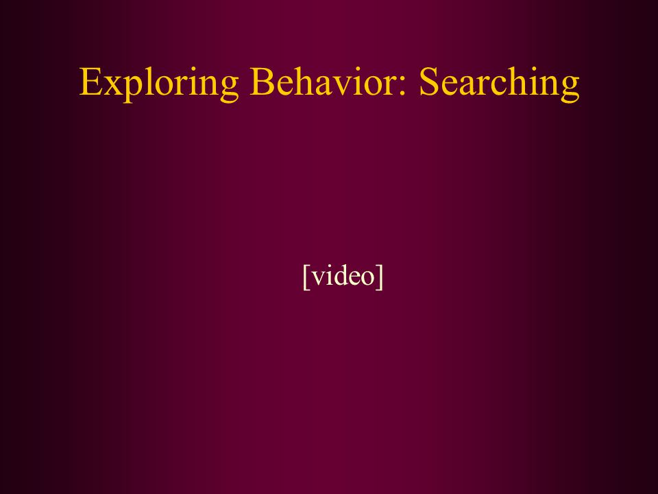 Exploring Behavior: Searching [video]