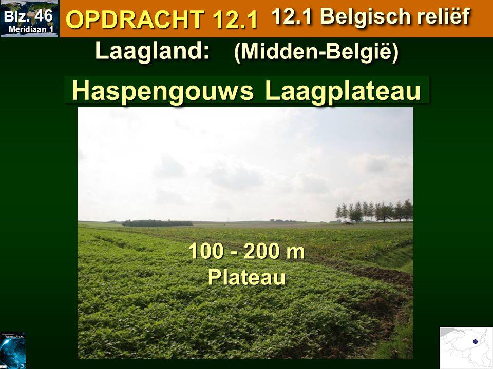 Laagland: (Midden-België) Haspengouws Laagplateau 100 - 200 m Plateau OPDRACHT 12.1 12.1 Belgisch reliëf Meridiaan 1 Meridiaan 1 Blz. 46