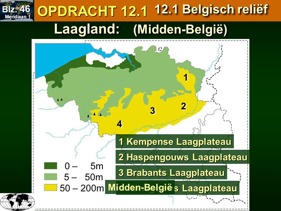 Laagland: (Midden-België) 0 – 5m 5 – 50m 50 – 200m 0 – 5m 5 – 50m 1 1 2 2 3 3 4 4 1 Kempense Laagplateau 2 Haspengouws Laagplateau 3 Brabants Laagplat
