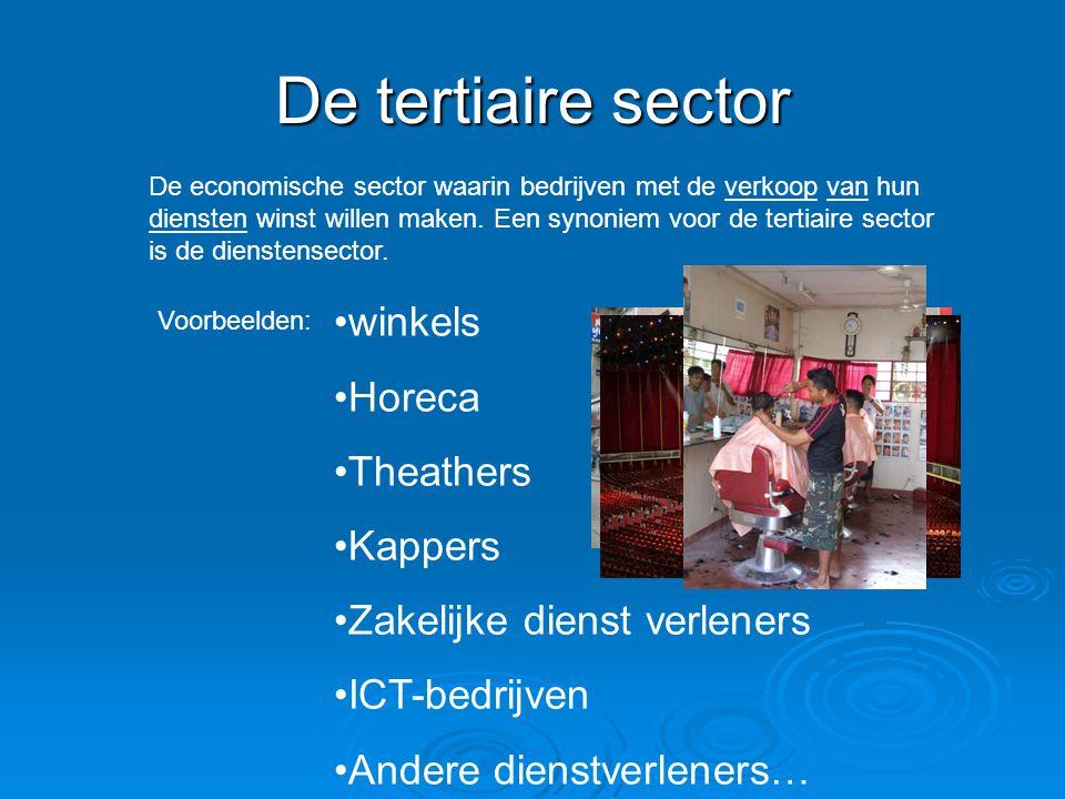 De tertiaire sector De economische sector waarin bedrijven met de verkoop van hun diensten winst willen maken.
