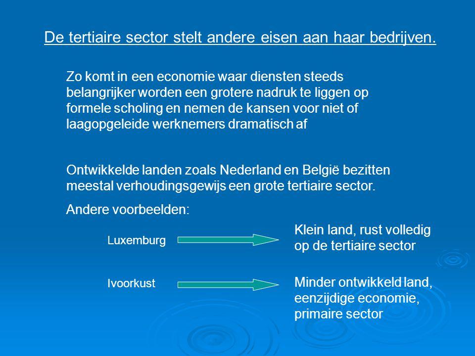 De tertiaire sector stelt andere eisen aan haar bedrijven. Zo komt in een economie waar diensten steeds belangrijker worden een grotere nadruk te ligg