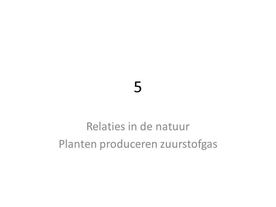 5 Relaties in de natuur Planten produceren zuurstofgas