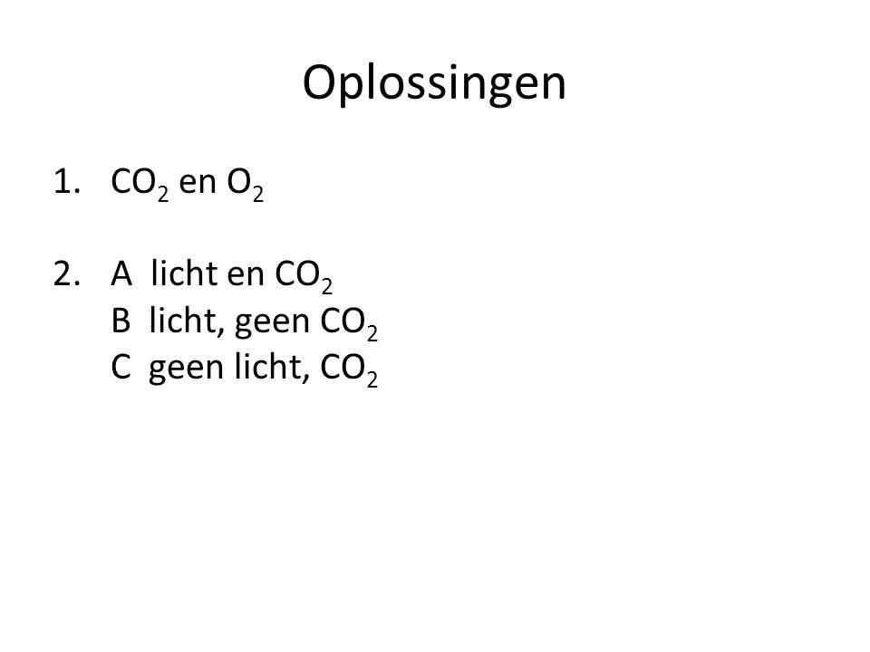 Oplossingen 1.CO 2 en O 2 2.A licht en CO 2 B licht, geen CO 2 C geen licht, CO 2