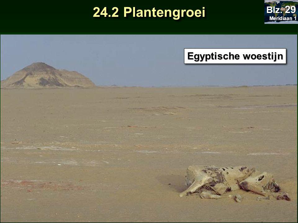 Egyptische woestijn 24.2 Plantengroei Meridiaan 1 Meridiaan 1 Blz. 29