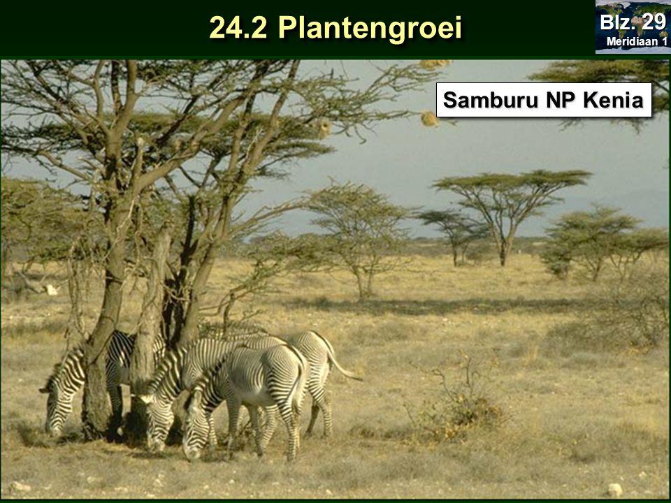 Samburu NP Kenia 24.2 Plantengroei Meridiaan 1 Meridiaan 1 Blz. 29