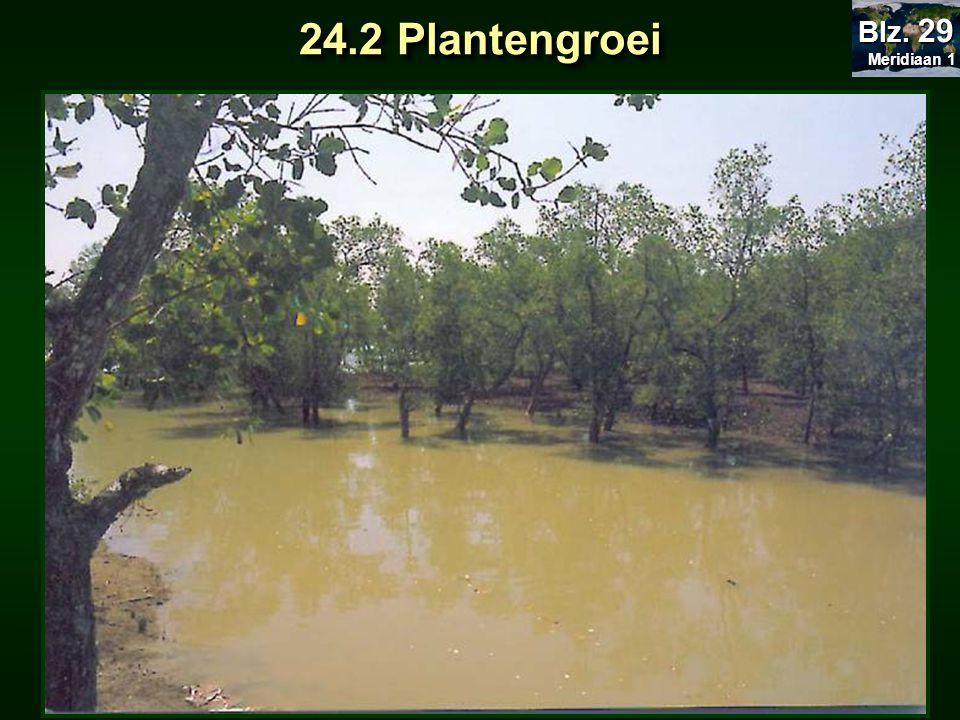 24.2 Plantengroei Meridiaan 1 Meridiaan 1 Blz. 29