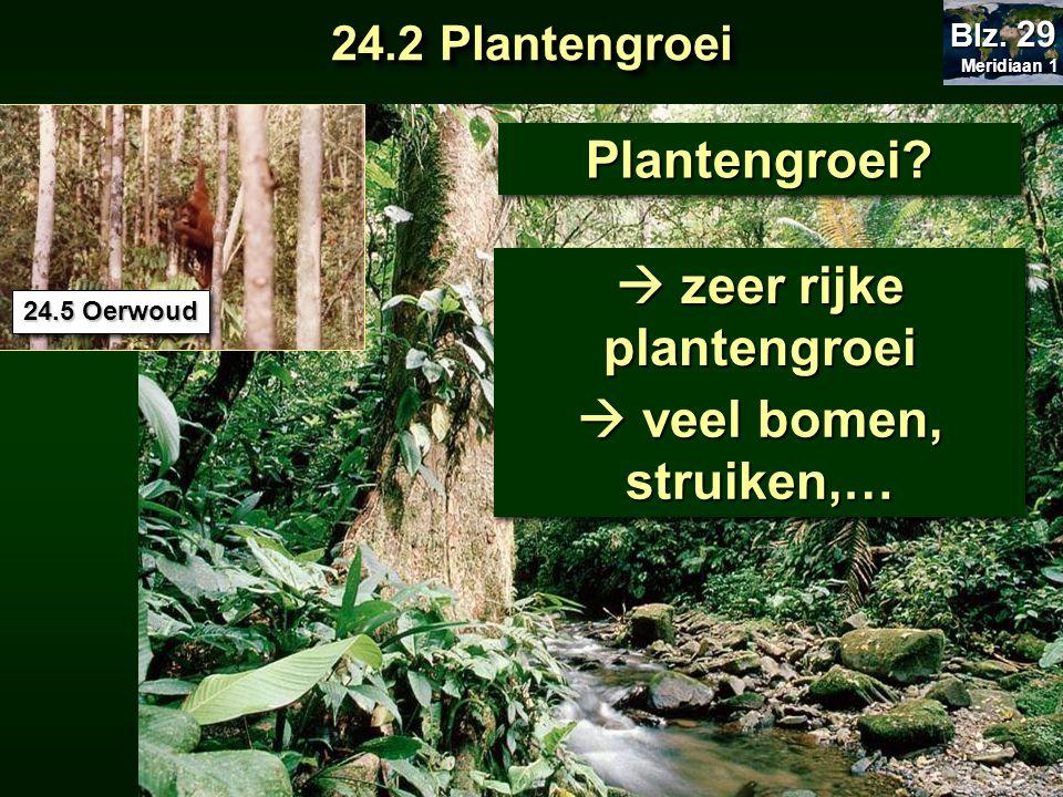 Plantengroei?Plantengroei?  zeer rijke plantengroei 24.5 Oerwoud  veel bomen, struiken,… 24.2 Plantengroei Meridiaan 1 Meridiaan 1 Blz. 29