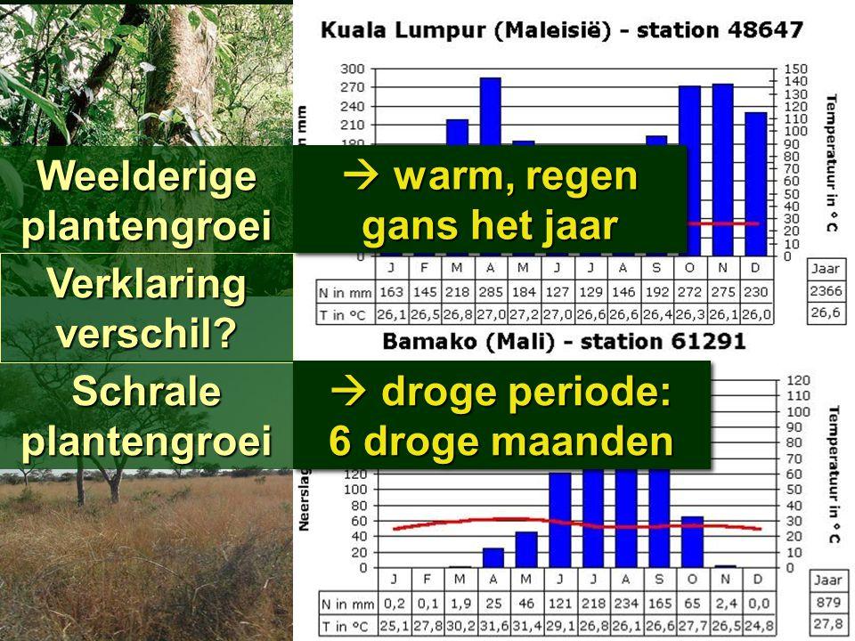 24.2 Plantengroei Meridiaan 1 Meridiaan 1 Blz. 29 OerwoudOerwoud SavanneSavanne Weelderige plantengroei Schrale plantengroei Verklaringverschil?  war