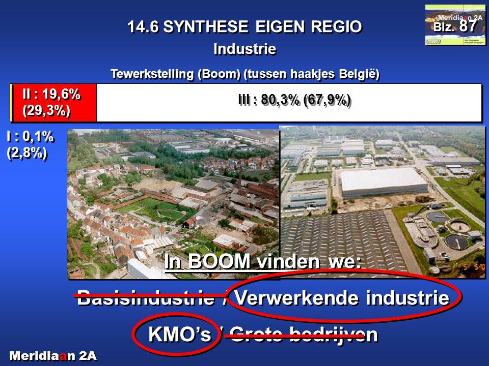 Meridiaan 2A 14.6 SYNTHESE EIGEN REGIO Industrie Blz. 87 Tewerkstelling (Boom) (tussen haakjes België) III : 80,3% (67,9%) II : 19,6% (29,3%) I : 0,1%