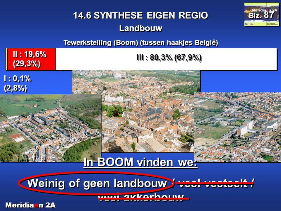 Meridiaan 2A 14.6 SYNTHESE EIGEN REGIO Landbouw Blz. 87 Tewerkstelling (Boom) (tussen haakjes België) III : 80,3% (67,9%) II : 19,6% (29,3%) I : 0,1%