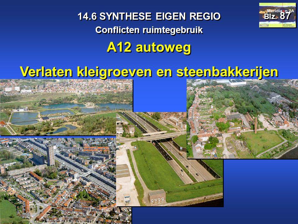 Meridiaan 2A 14.6 SYNTHESE EIGEN REGIO Conflicten ruimtegebruik Blz. 87 A12 autoweg Verlaten kleigroeven en steenbakkerijen A12 autoweg Verlaten kleig