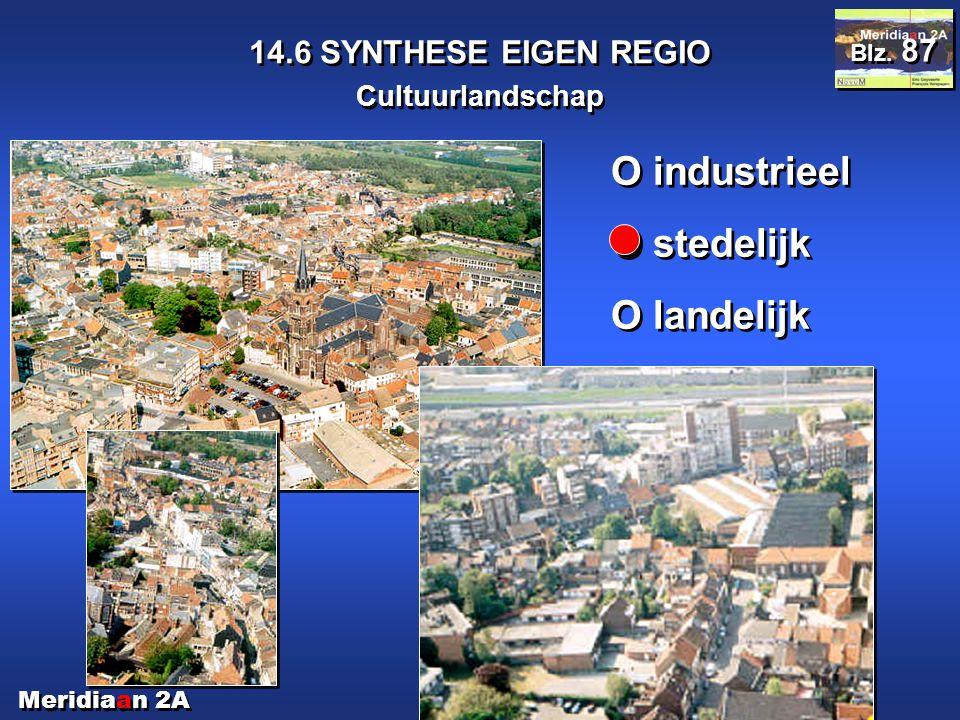 Meridiaan 2A 14.6 SYNTHESE EIGEN REGIO Cultuurlandschap Blz. 87 O industrieel O stedelijk O landelijk O industrieel O stedelijk O landelijk