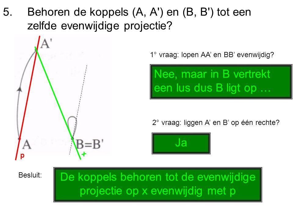 5.Behoren de koppels (A, A') en (B, B') tot een zelfde evenwijdige projectie? 1° vraag: lopen AA' en BB' evenwijdig? Nee, maar in B vertrekt een lus d