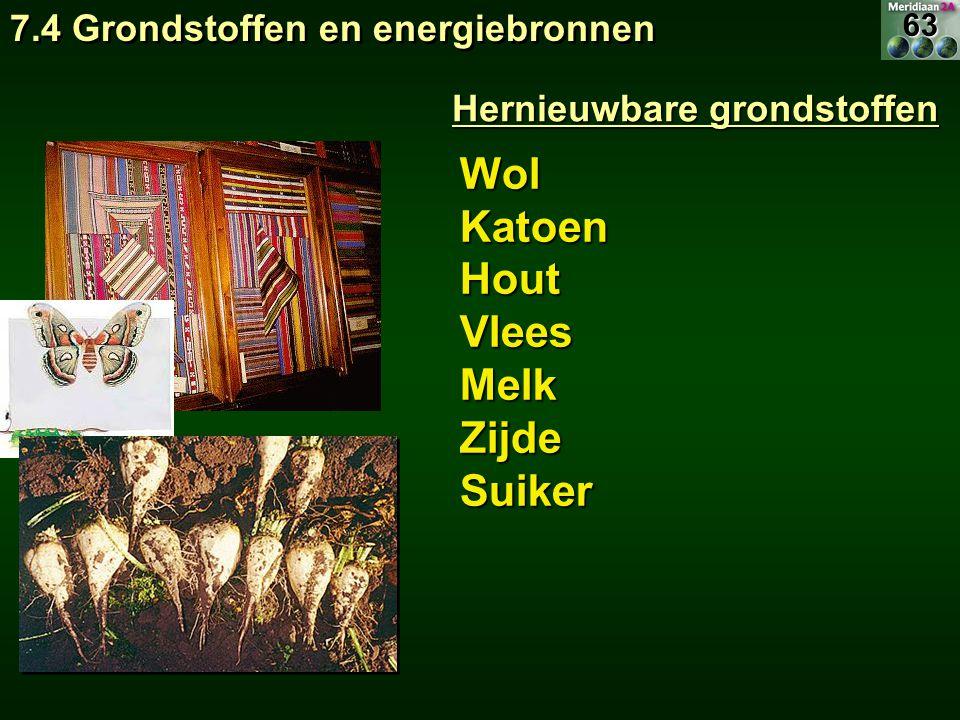 WolKatoenHoutVleesMelkZijdeSuiker Hernieuwbare grondstoffen 7.4 Grondstoffen en energiebronnen 63
