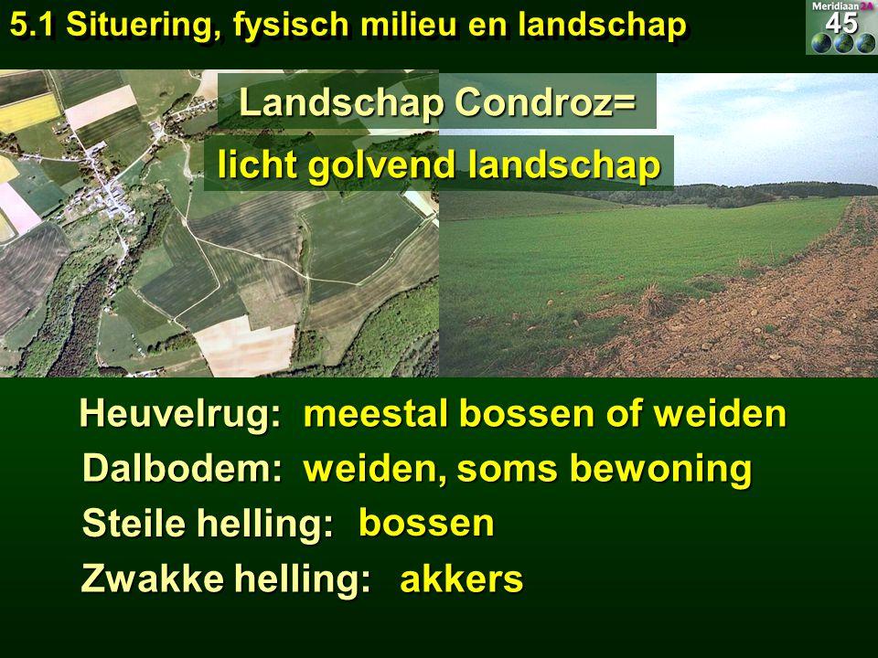 Heuvelrug: Landschap Condroz= meestal bossen of weiden Dalbodem: weiden, soms bewoning Steile helling: bossen Zwakke helling: akkers 5.1 Situering, fy