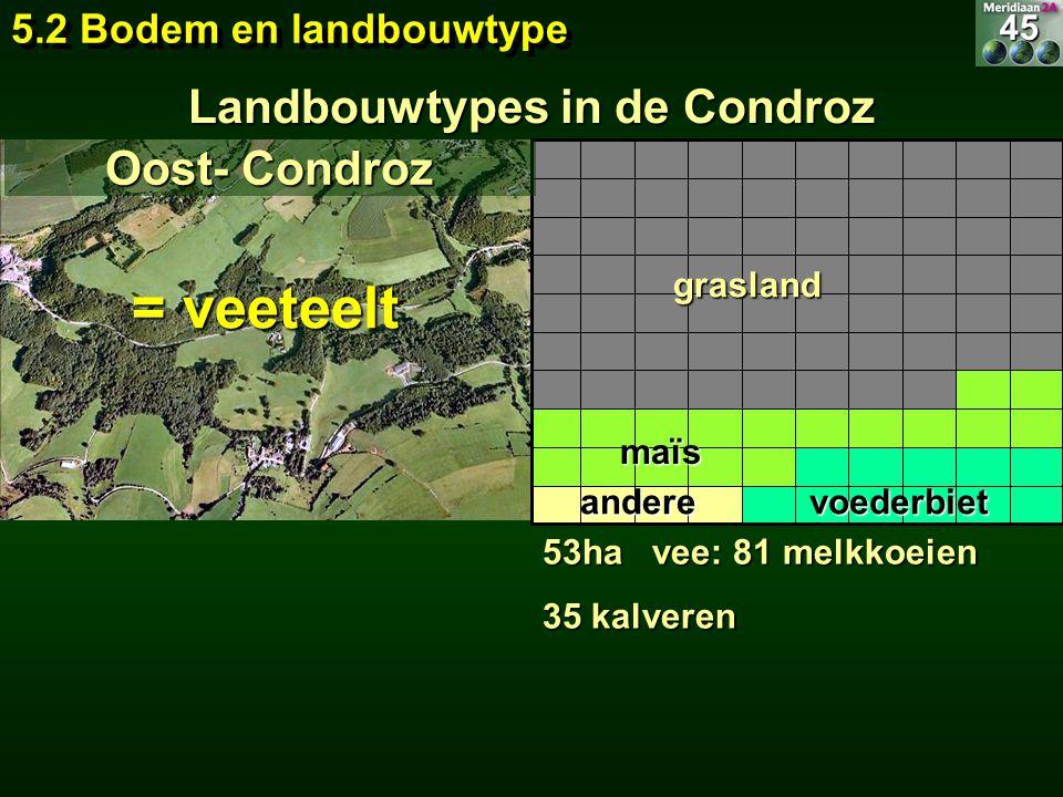 Landbouwtypes in de Condroz 53ha vee: 81 melkkoeien 35 kalveren = veeteelt 5.2 Bodem en landbouwtype 45 Oost- Condroz