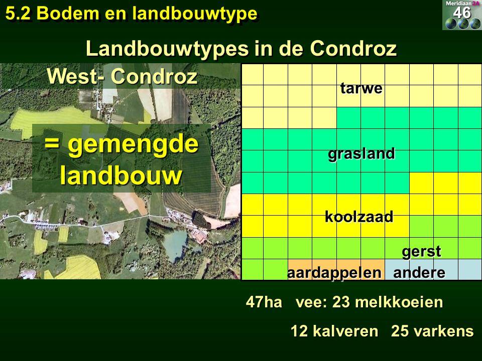 Landbouwtypes in de Condroz = gemengde landbouw 47ha vee: 23 melkkoeien 12 kalveren 25 varkens 12 kalveren 25 varkens West- Condroz 5.2 Bodem en landb