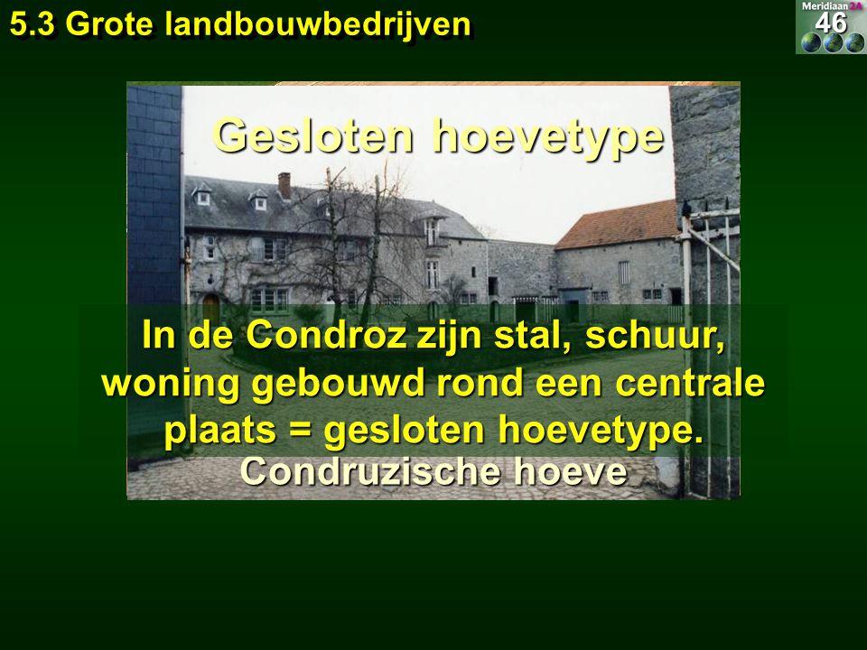 5.3 Grote landbouwbedrijven Condruzische hoeve In de Condroz zijn stal, schuur, woning gebouwd rond een centrale plaats = gesloten hoevetype. Gesloten