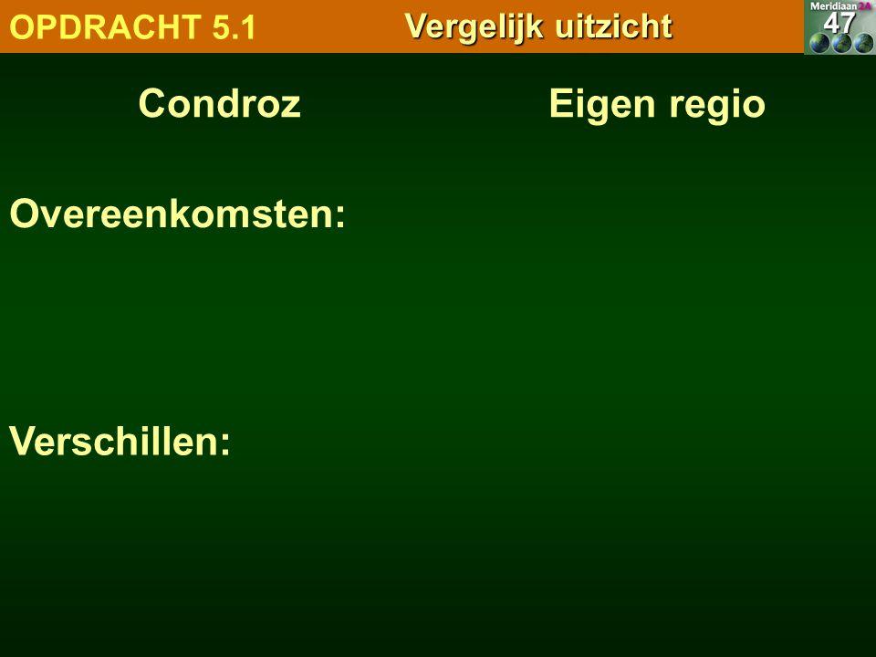7.1.1 Natuurlandschappen OPDRACHT 5.1 Vergelijk uitzicht CondrozEigen regio47 Overeenkomsten: Verschillen: