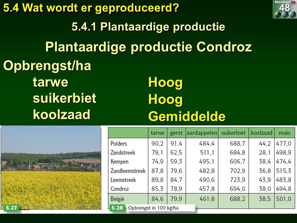 Opbrengst/ha tarwe tarwe suikerbiet suikerbiet koolzaad koolzaad Hoog Hoog Gemiddelde 5.4 Wat wordt er geproduceerd? 5.4.1 Plantaardige productie 48 P