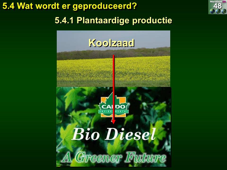 Koolzaad 5.4 Wat wordt er geproduceerd? 5.4.1 Plantaardige productie 48