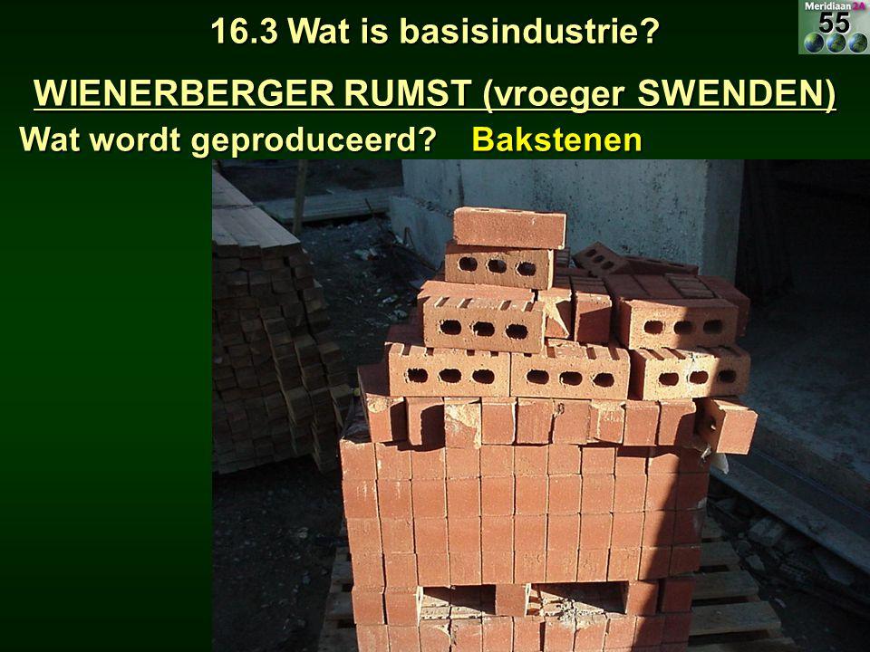 16.3 Wat is basisindustrie? WIENERBERGER RUMST (vroeger SWENDEN) Wat wordt geproduceerd? Bakstenen55