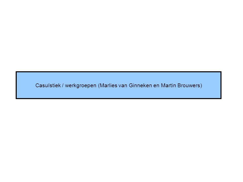Casuïstiek / werkgroepen (Marlies van Ginneken en Martin Brouwers)