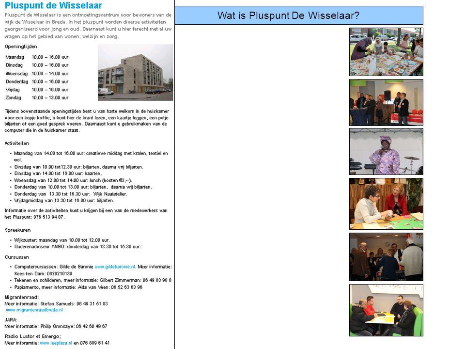 Wat is Pluspunt De Wisselaar?