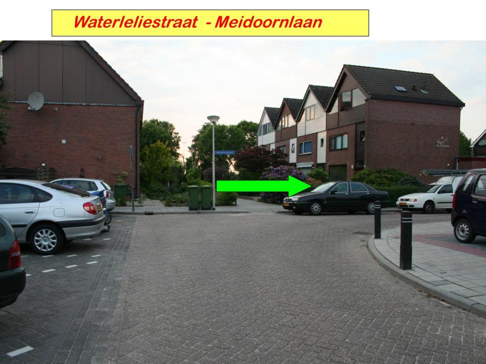 Waterleliestraat - Meidoornlaan