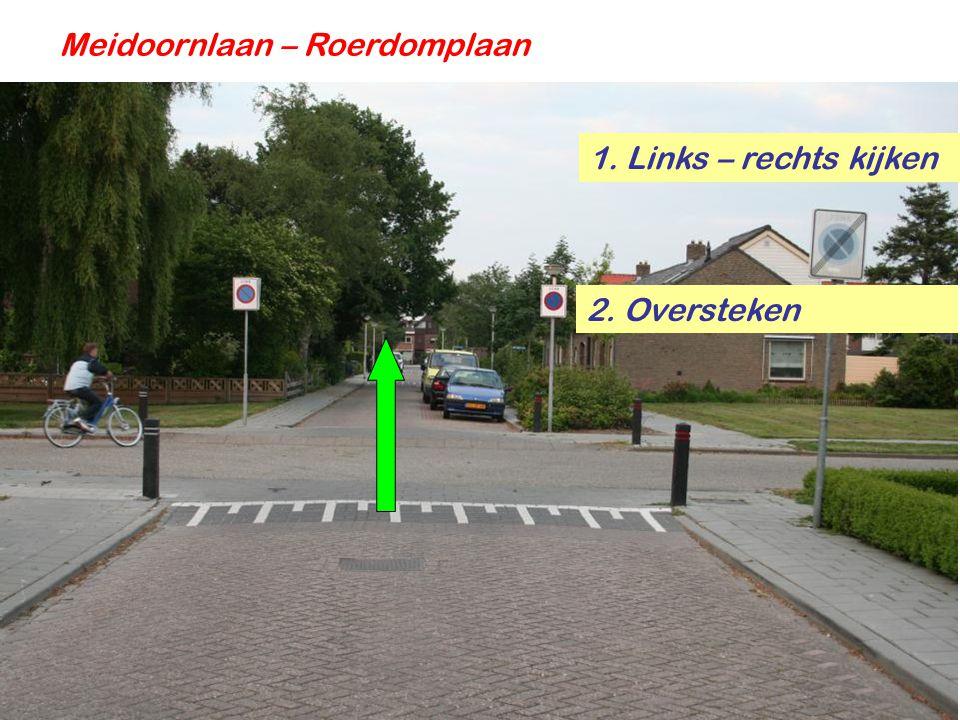 Meidoornlaan – Roerdomplaan 1. Links – rechts kijken 2. Oversteken