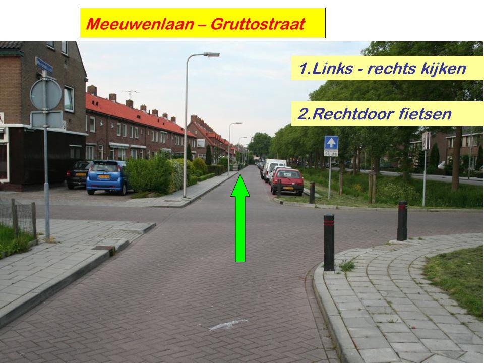 Meeuwenlaan – Gruttostraat 1.Links - rechts kijken 2.Rechtdoor fietsen