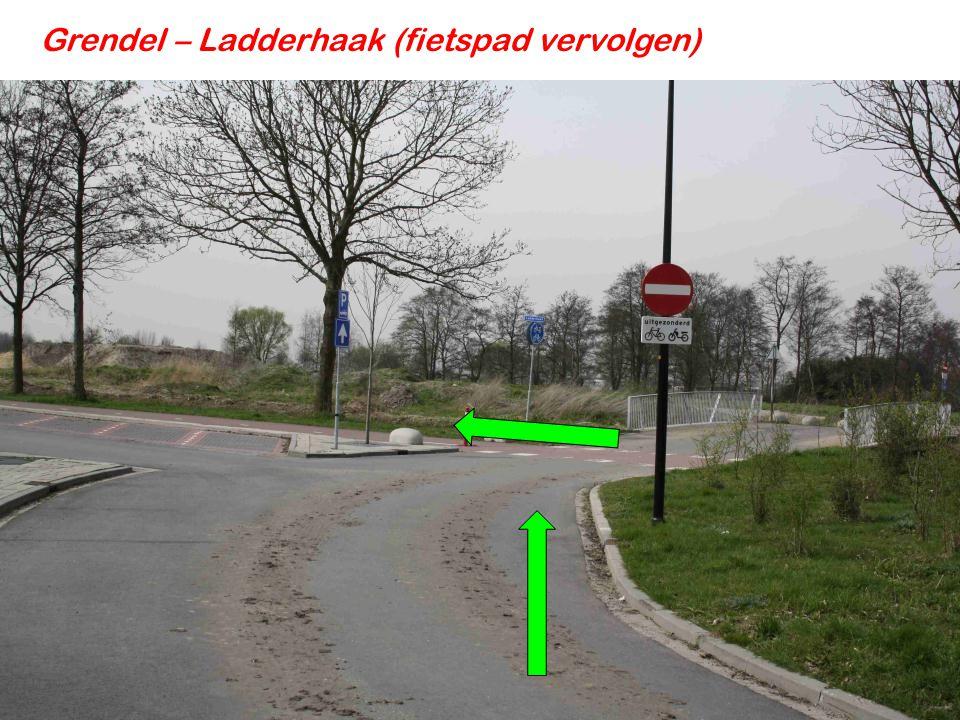 Grendel – Ladderhaak (fietspad vervolgen) 1.Voorrang verlenen 2. Oversteken
