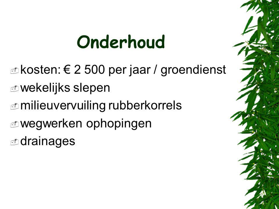 Onderhoud  kosten: € 2 500 per jaar / groendienst  wekelijks slepen  milieuvervuiling rubberkorrels  wegwerken ophopingen  drainages