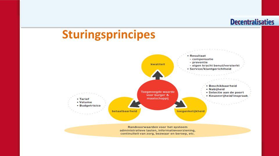 Sturingsprincipes