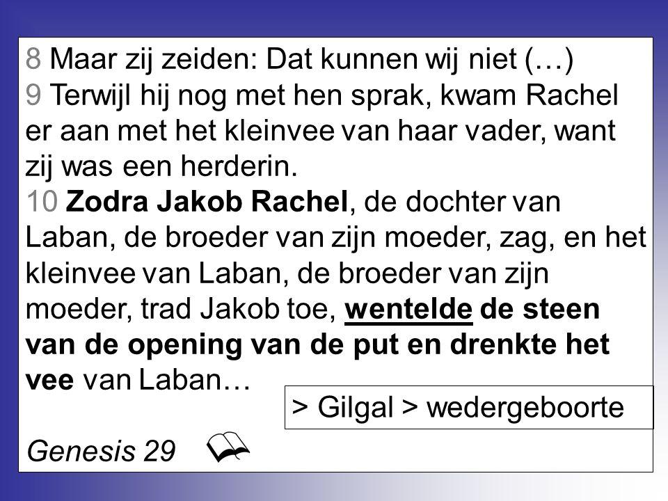 8 Maar zij zeiden: Dat kunnen wij niet (…) 9 Terwijl hij nog met hen sprak, kwam Rachel er aan met het kleinvee van haar vader, want zij was een herde