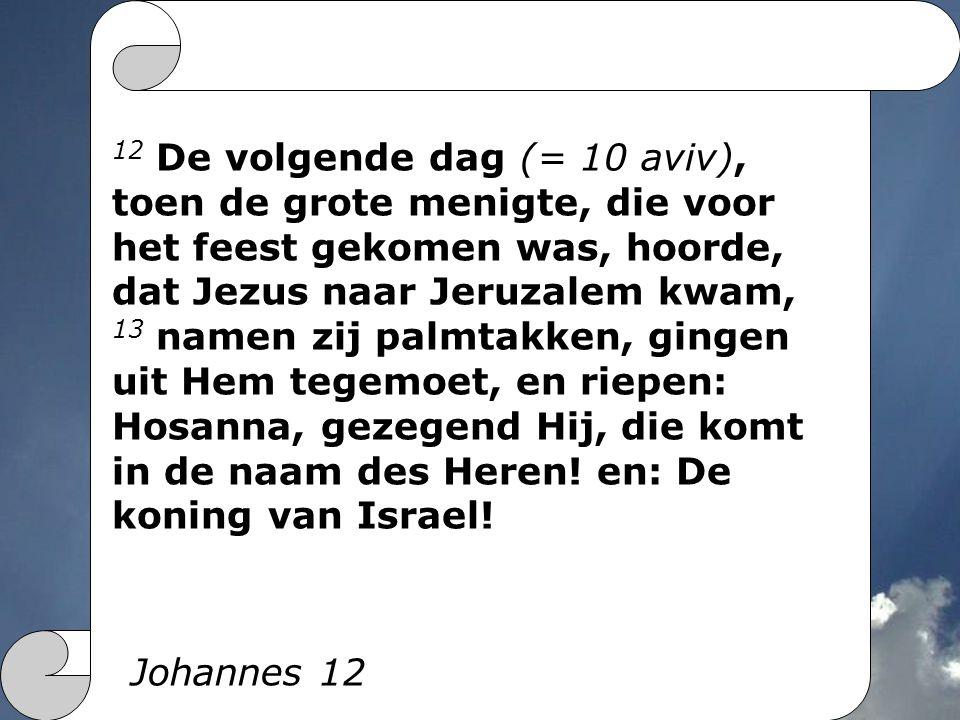 12 De volgende dag (= 10 aviv), toen de grote menigte, die voor het feest gekomen was, hoorde, dat Jezus naar Jeruzalem kwam, 13 namen zij palmtakken,